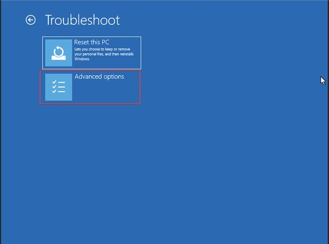 Troubleshooting Menu in Windows Recovery
