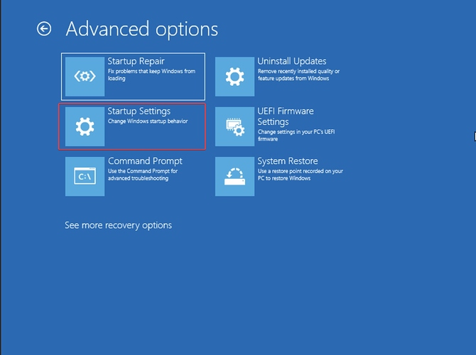 Advanced Options Menu in Windows Recovery